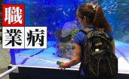 銀座SONYビル~美ら海の世界と出会う夏~レポート