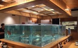 施工日誌~活魚水槽@兵庫県神戸市